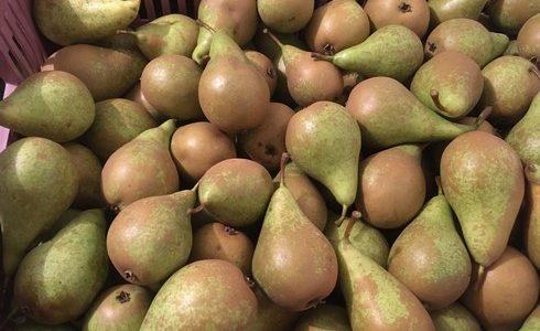 Nabídka ovoce – BIO hrušky a černé jeřabiny.