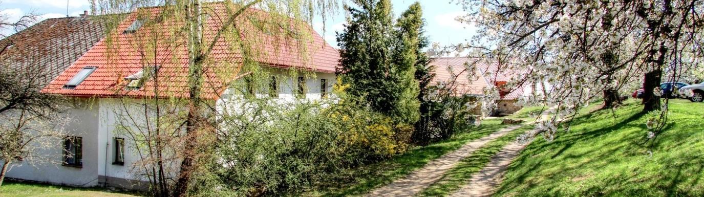 Rozkvetlé stromy na zahradě